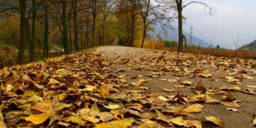 Najlepsze produkty finansowe – listopad 2014
